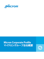 Japan jobs